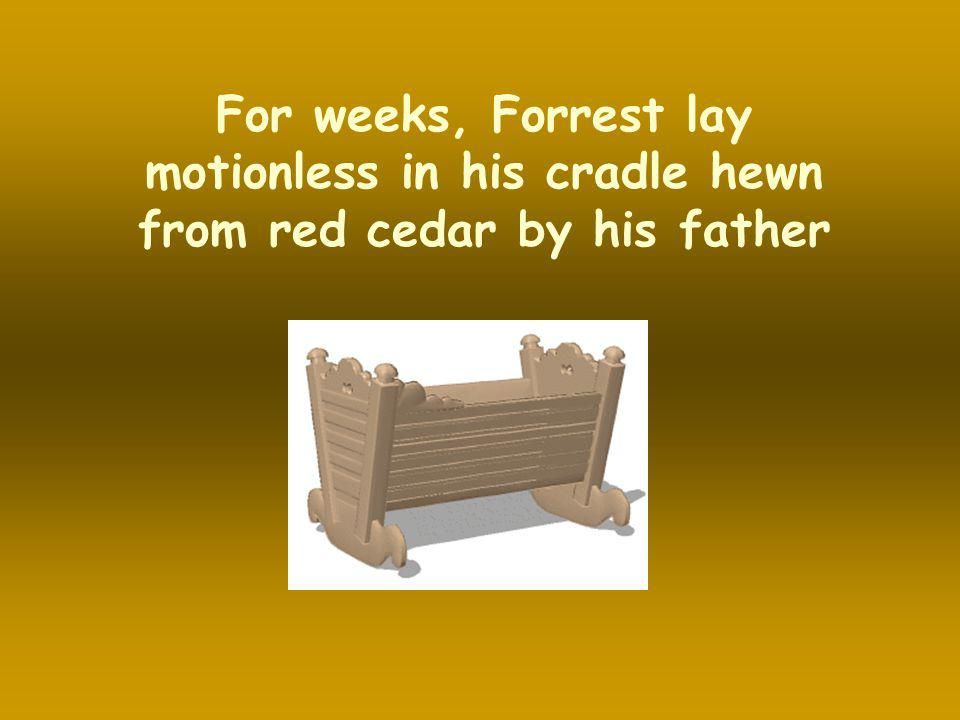 For weeks, Forrest lay motionless in his cradle hewn from red cedar by his father