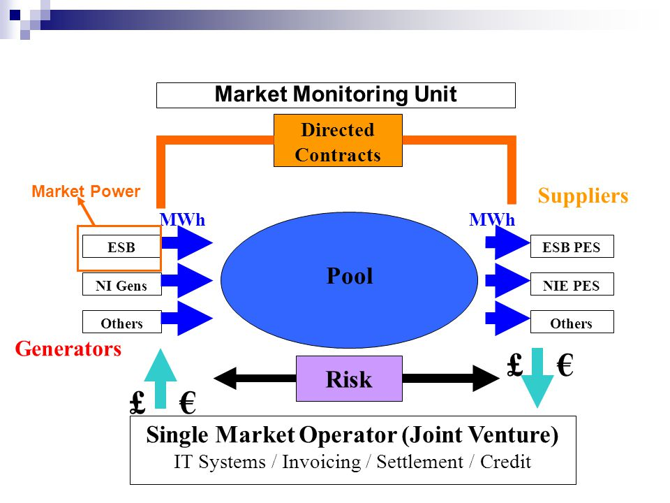 Market Monitoring Unit