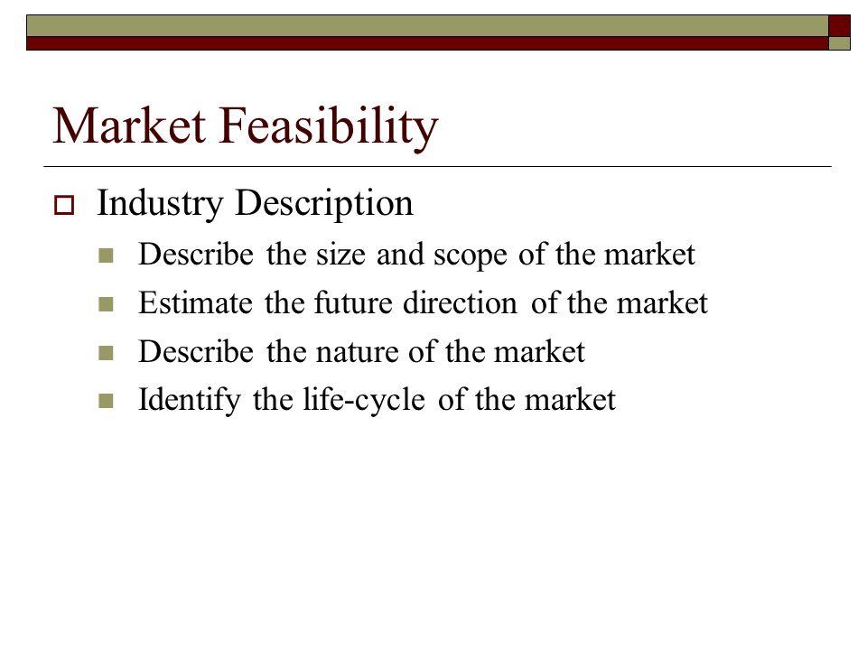 Market Feasibility Industry Description