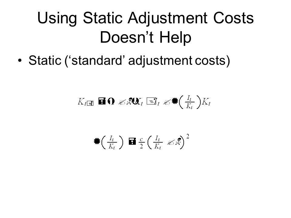 Using Static Adjustment Costs Doesn't Help