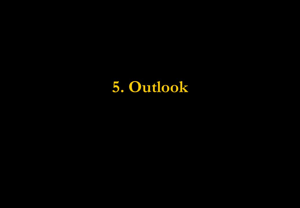 5. Outlook
