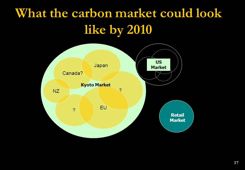 What the carbon market could look like by 2010