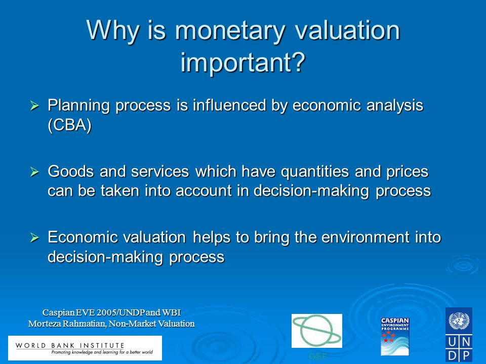 Why is monetary valuation important