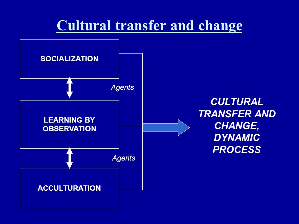 Cultural transfer and change
