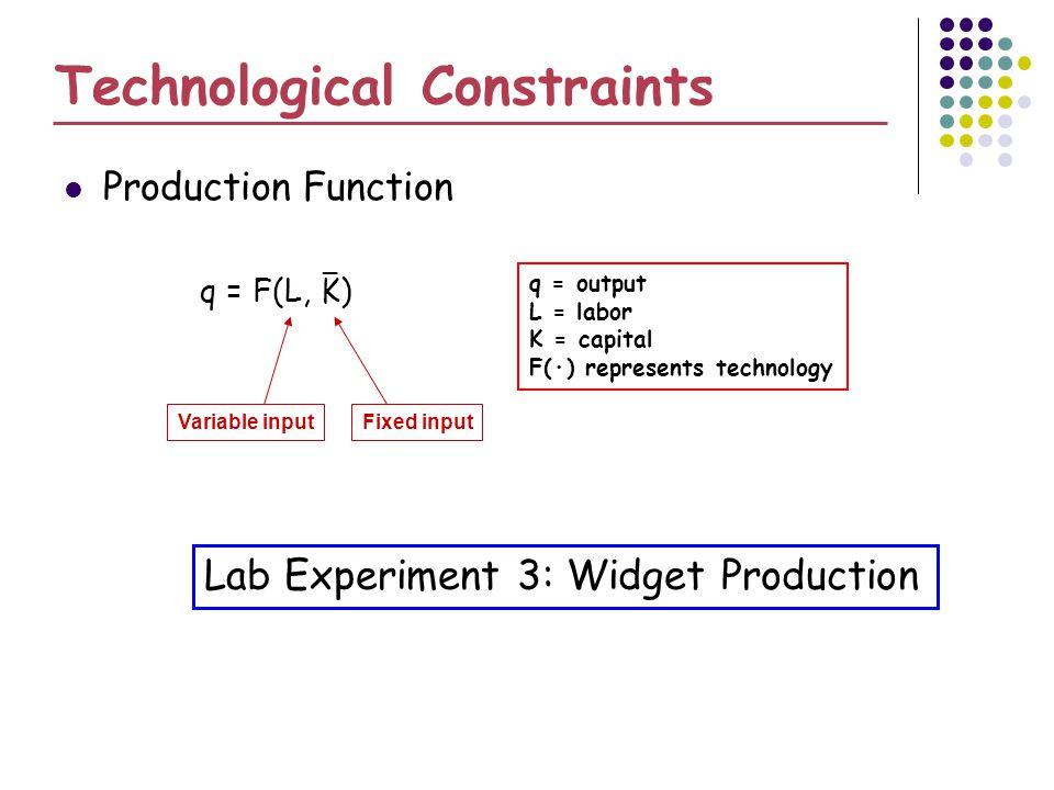Technological Constraints