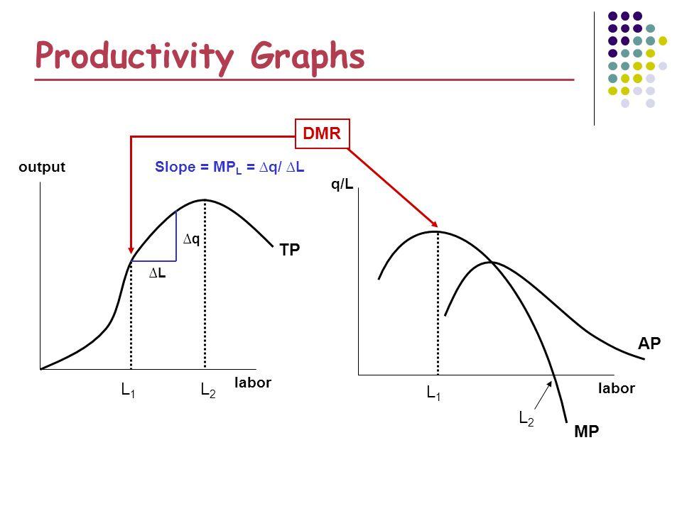 Productivity Graphs DMR TP AP L1 L2 L1 L2 MP output