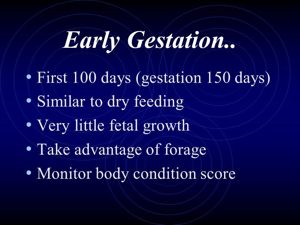 Early Gestation.. First 100 days (gestation 150 days)