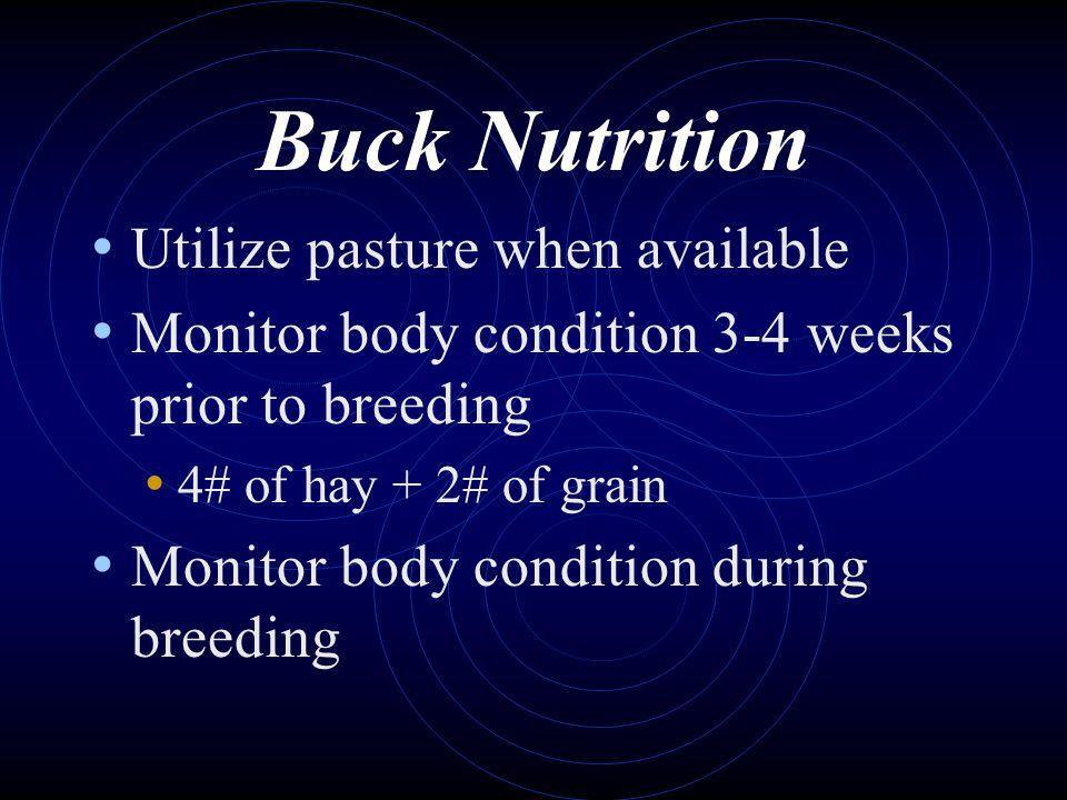 Buck Nutrition Utilize pasture when available