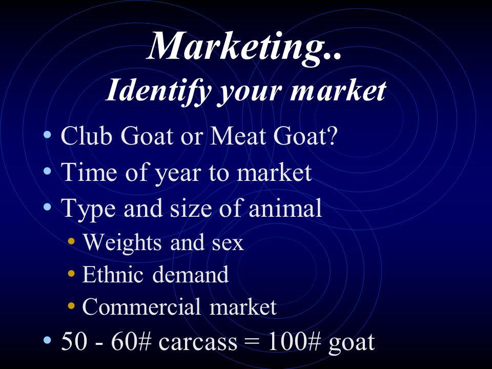 Marketing.. Identify your market