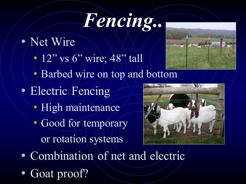 Fencing.. Net Wire Electric Fencing Combination of net and electric