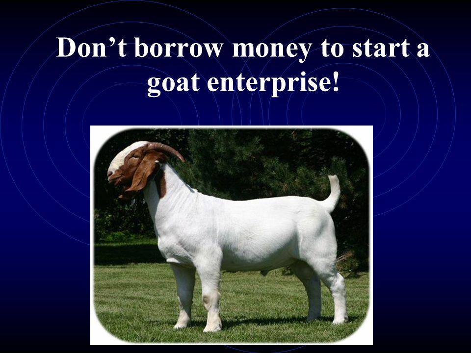 Don't borrow money to start a goat enterprise!
