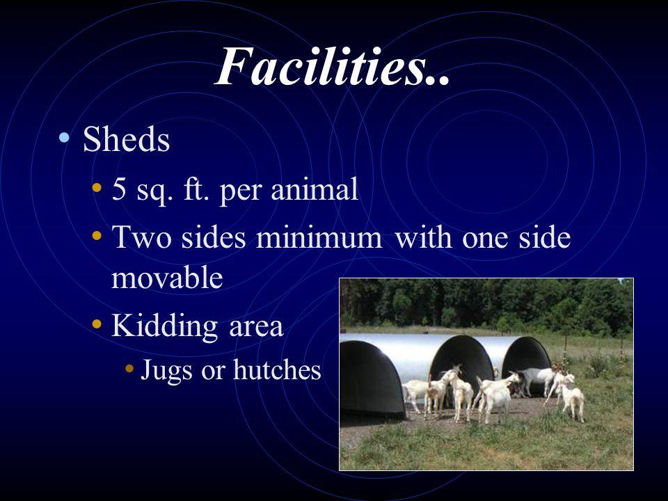 Facilities.. Sheds 5 sq. ft. per animal