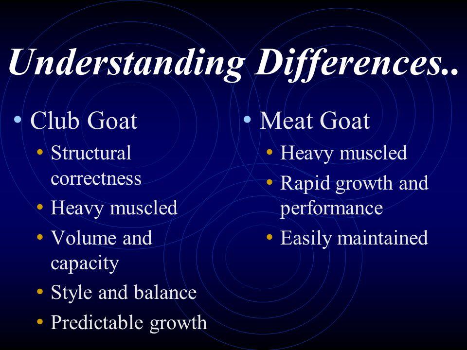 Understanding Differences..