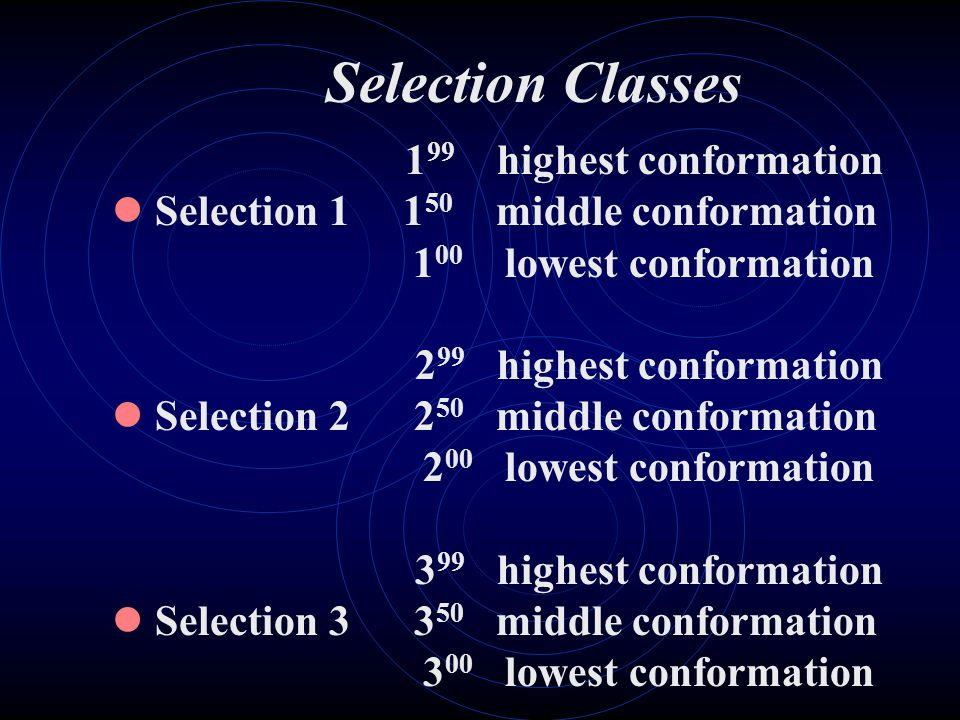 Selection Classes 199 highest conformation