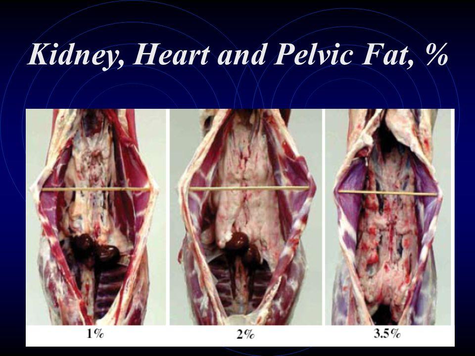 Kidney, Heart and Pelvic Fat, %