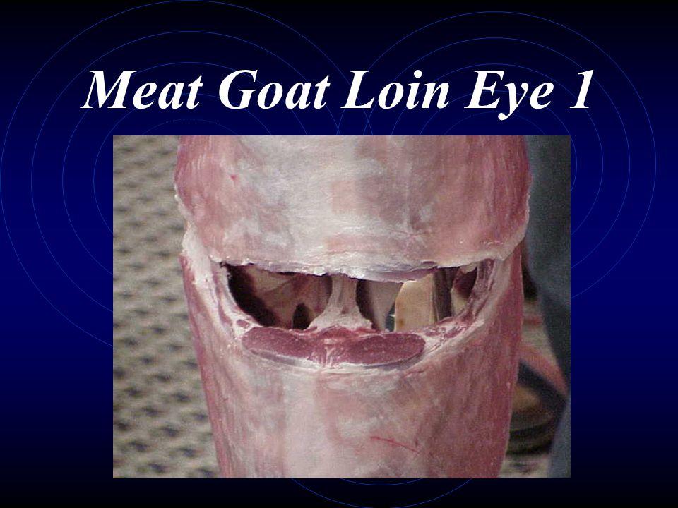 Meat Goat Loin Eye 1