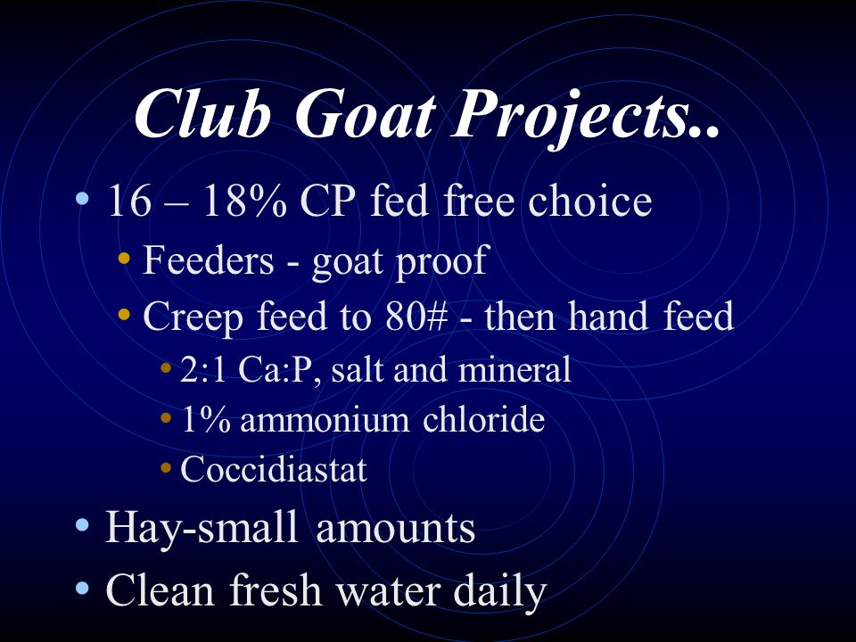Club Goat Projects.. 16 – 18% CP fed free choice Hay-small amounts