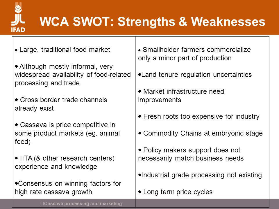 WCA SWOT: Strengths & Weaknesses