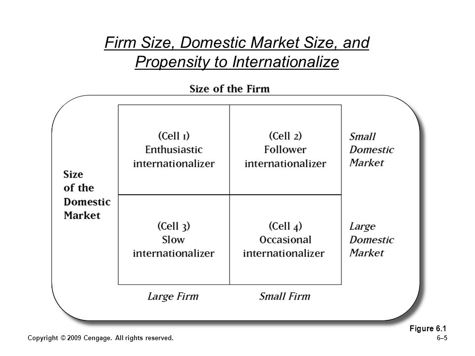 Firm Size, Domestic Market Size, and Propensity to Internationalize