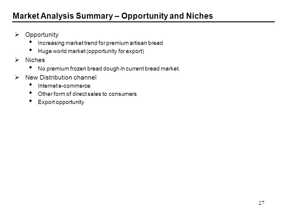 Market Analysis Summary – Opportunity and Niches