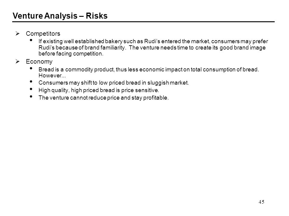 Venture Analysis – Risks