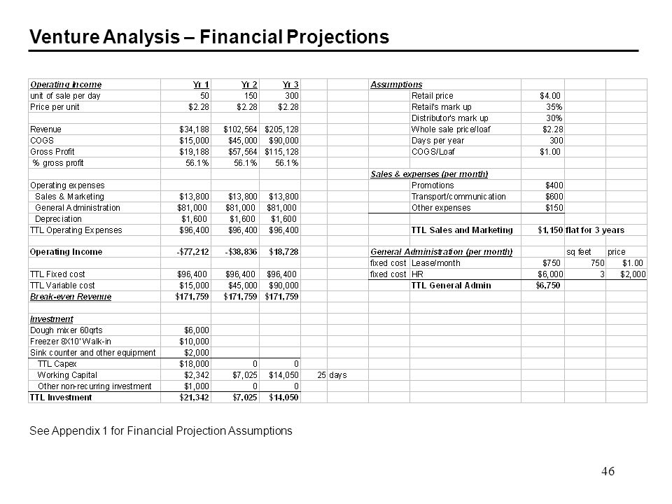 Venture Analysis – Financial Projections