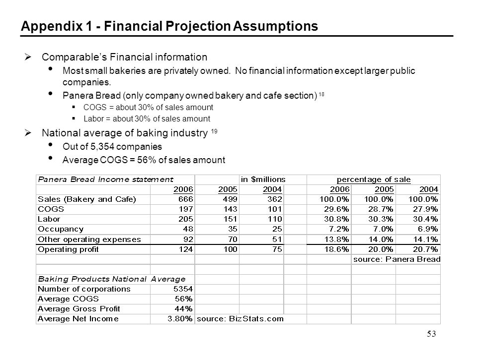 Appendix 1 - Financial Projection Assumptions