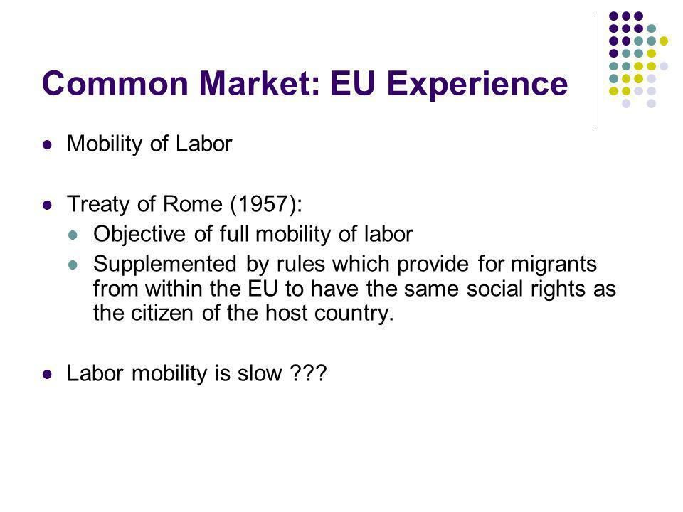 Common Market: EU Experience