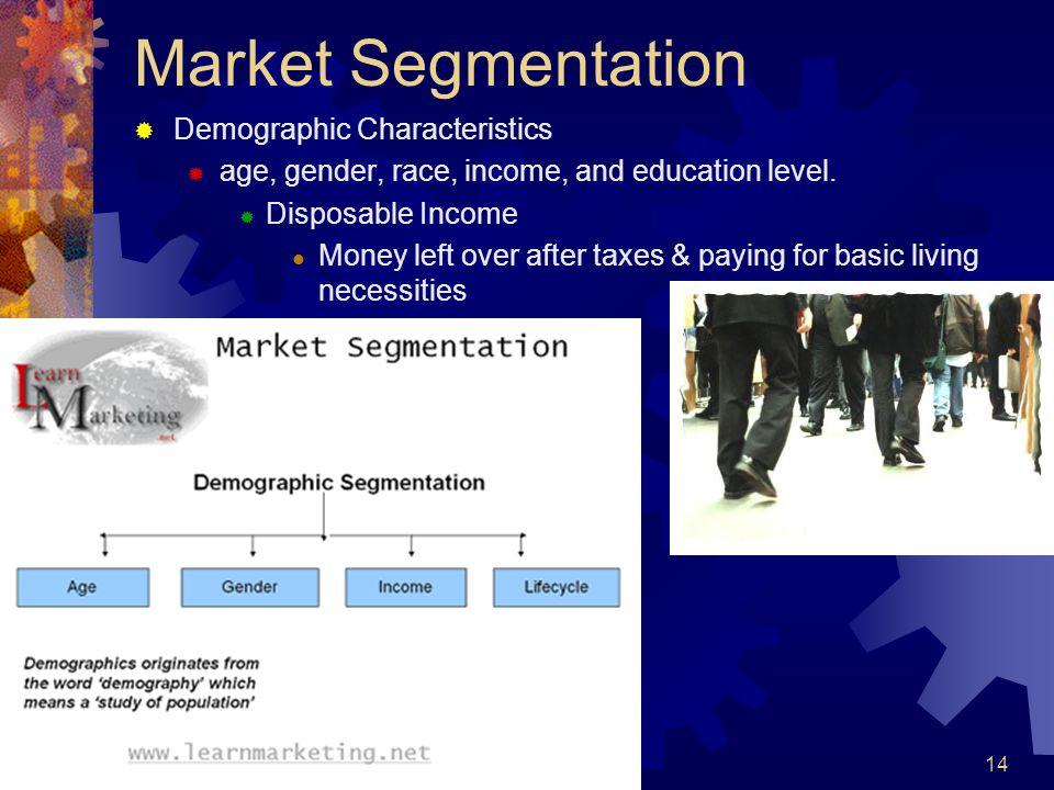 Market Segmentation Demographic Characteristics