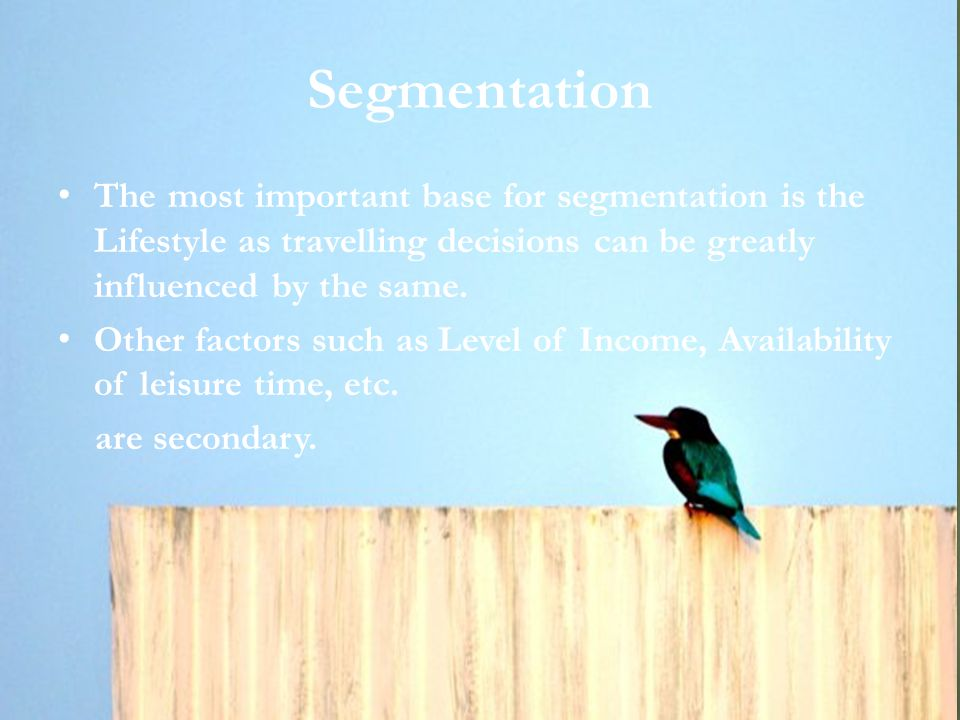 Segmentation The most important base for segmentation is the Lifestyle as travelling decisions can be greatly influenced by the same.