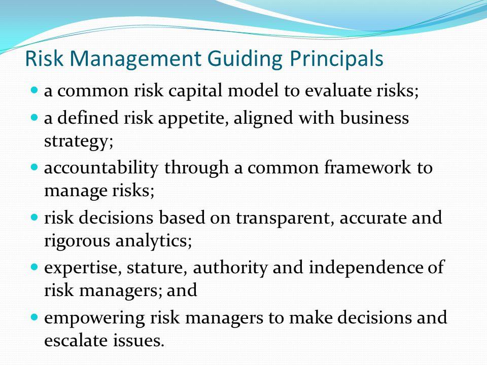 Risk Management Guiding Principals