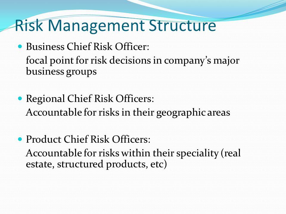 Risk Management Structure
