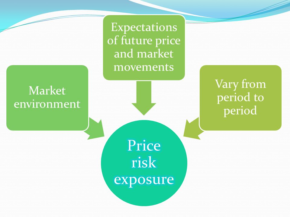 Price risk exposure Expectations of future price and market movements