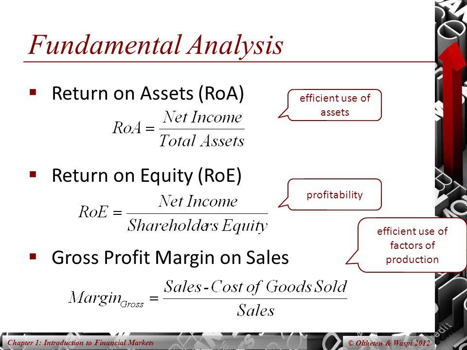 Fundamental Analysis Return on Assets (RoA) Return on Equity (RoE)