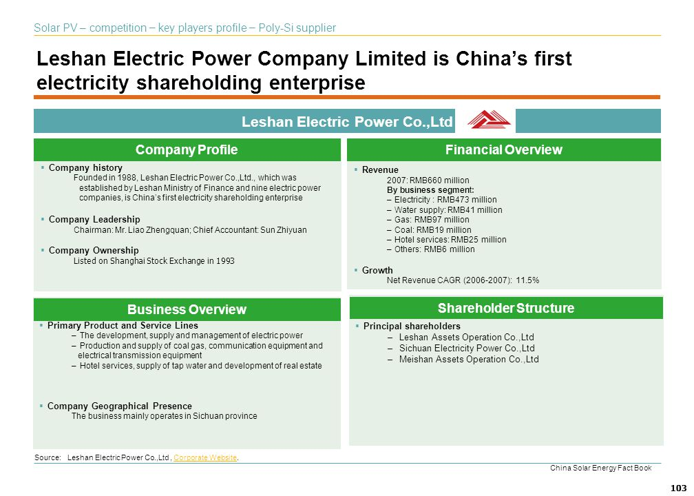 Leshan Electric Power Co.,Ltd Shareholder Structure