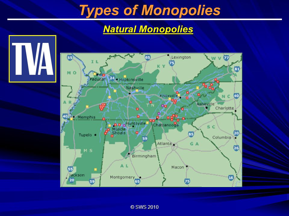 Types of Monopolies Natural Monopolies © SWS 2010