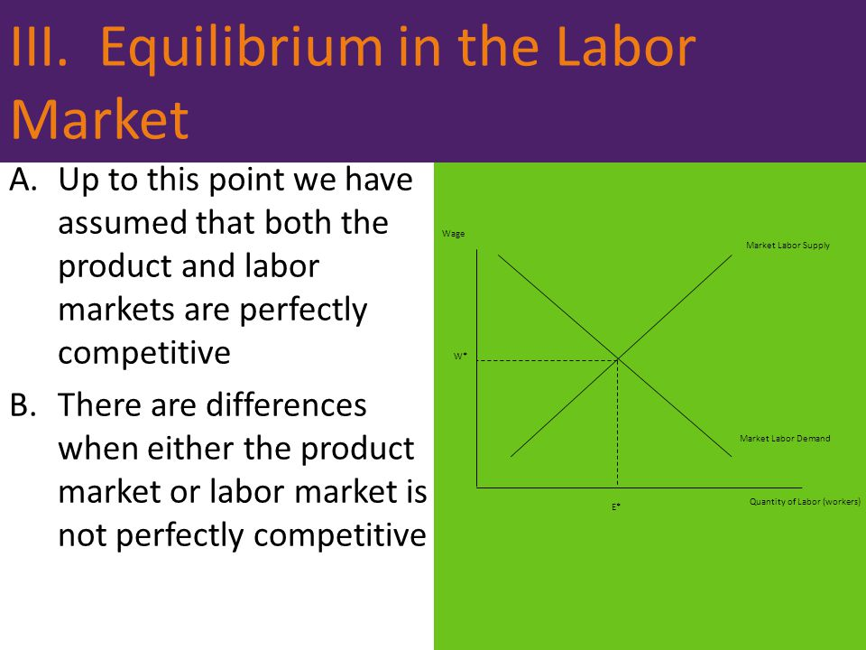 III. Equilibrium in the Labor Market