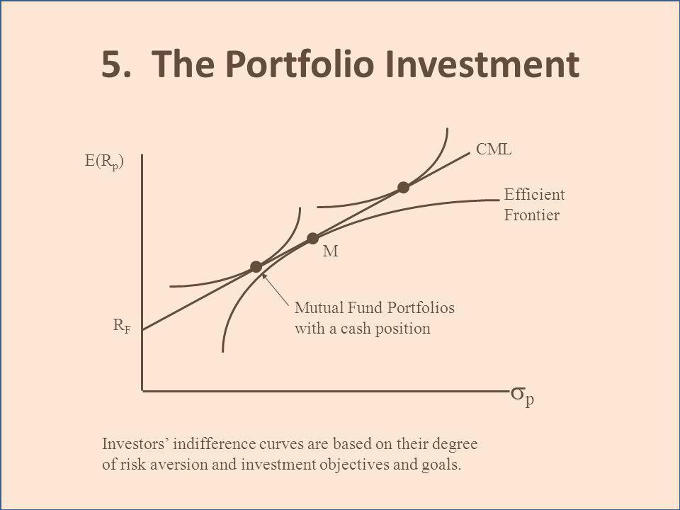 5. The Portfolio Investment
