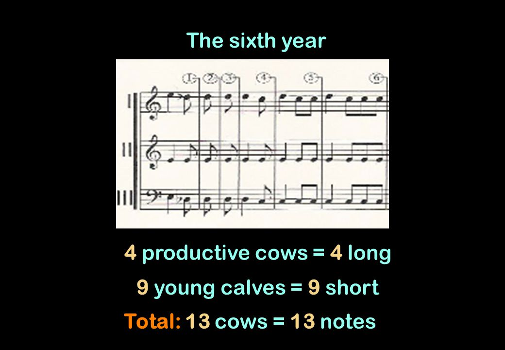 The sixth year 4 productive cows = 4 long 9 young calves = 9 short Total: 13 cows = 13 notes