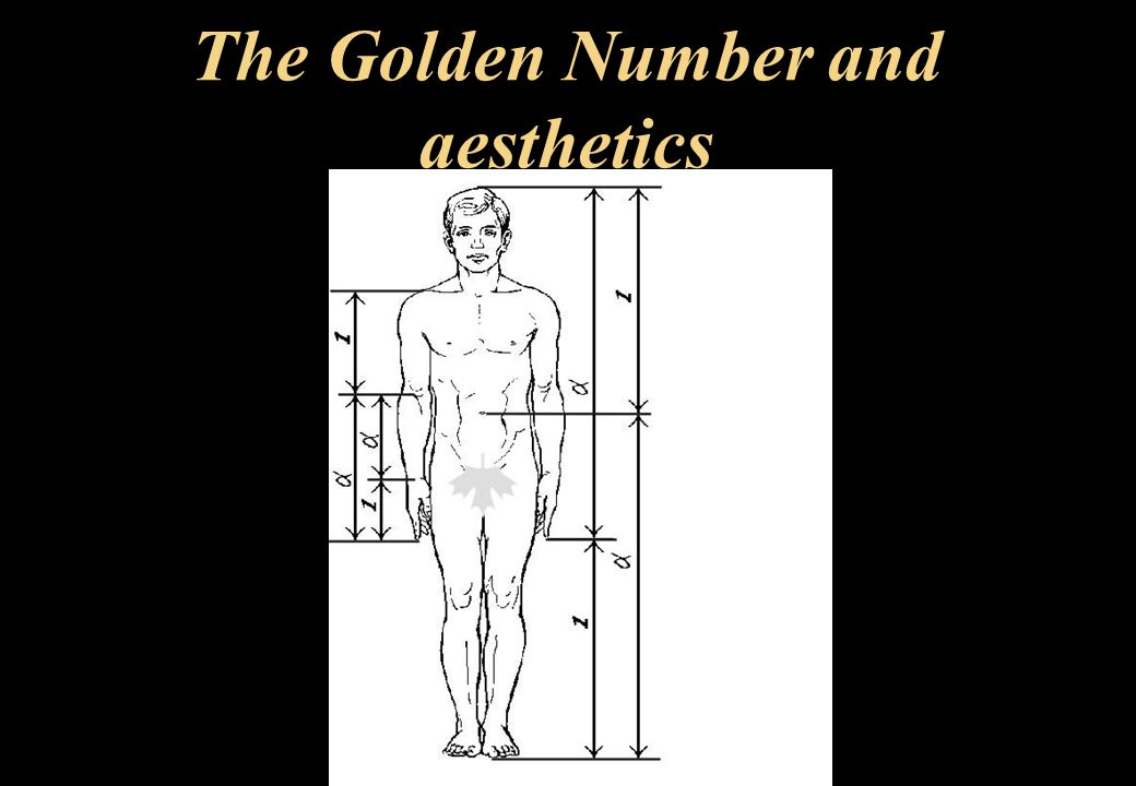 The Golden Number and aesthetics