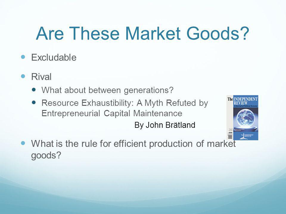 Are These Market Goods Excludable Rival