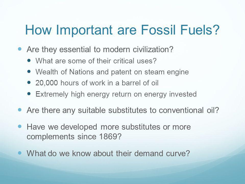 How Important are Fossil Fuels