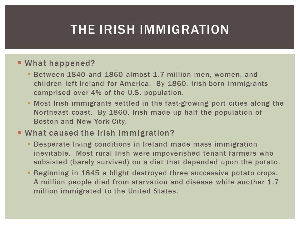 The Irish Immigration What happened