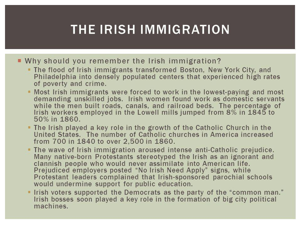 The Irish Immigration Why should you remember the Irish immigration