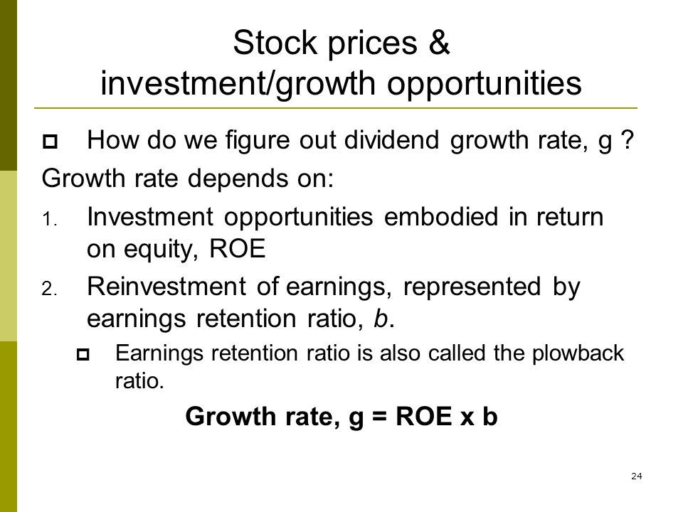 Stock prices & investment/growth opportunities