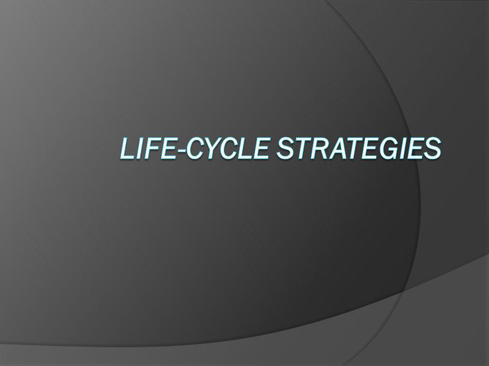 Life-Cycle Strategies