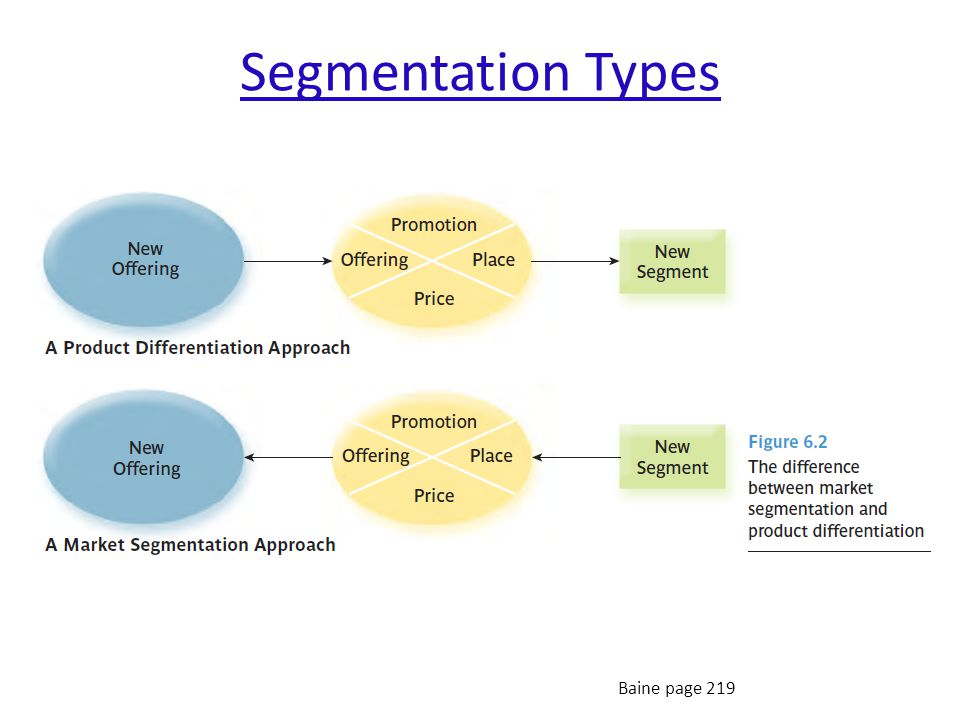 Segmentation Types Baine page 219