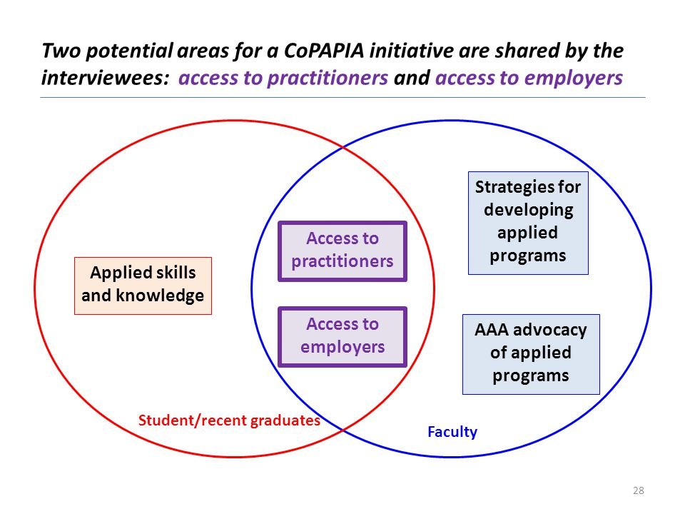 Two potential areas for a CoPAPIA initiative are shared by the interviewees: access to practitioners and access to employers