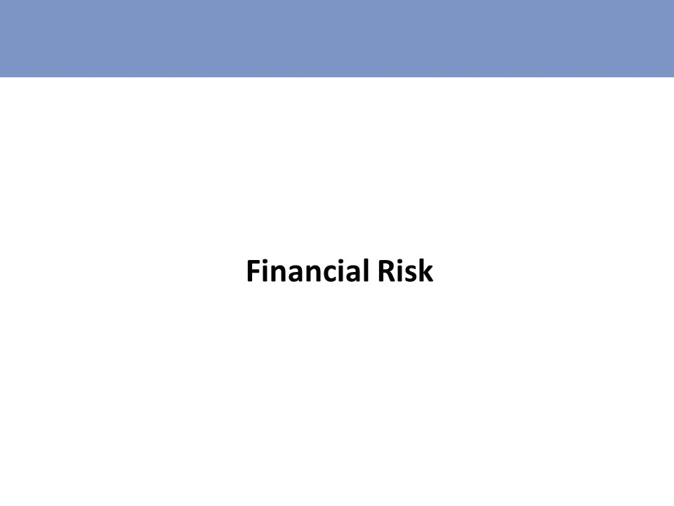 Financial Risk If you invested $100 000 000 – what are the risks that you are running