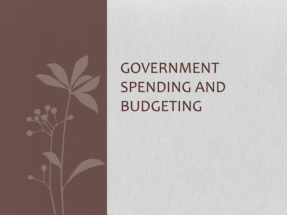 Government spending and budgeting